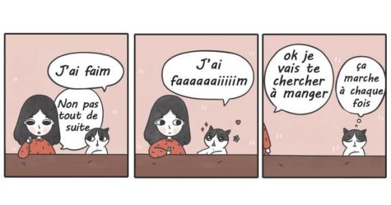 Top 10 des illustrations de Catncatcomics, le chat qui était un petit FDP