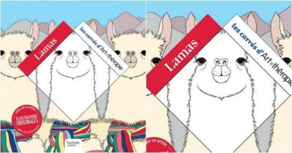 Un livre d'illustrations de Lamas