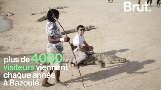 VIDEO. Dans un village au Burkina Faso, hommes et crocodiles vivent en harmonie