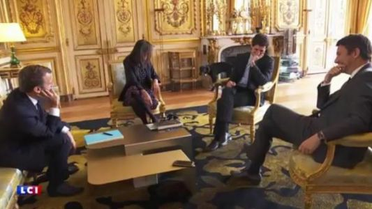 VIDEO. Quand Nemo, le chien du couple Macron, urine dans un salon de l'Elysée